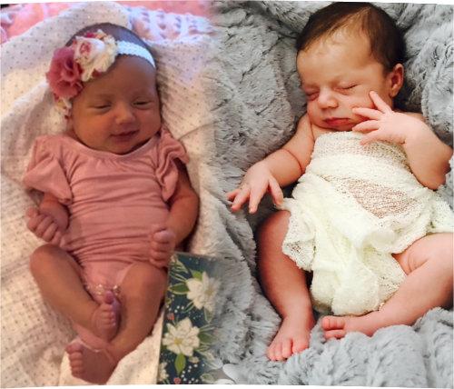 Heston Babies